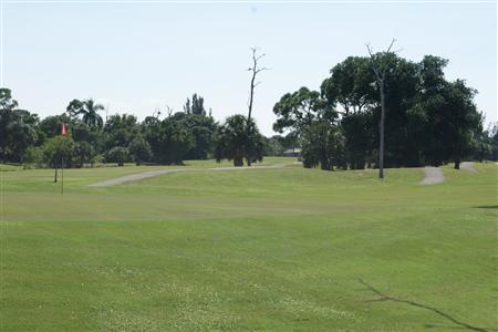 Golf Course Imported Red Fire Ants